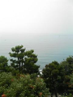 image/cafe-yuki-2006-06-30T02:08:53-1.jpg